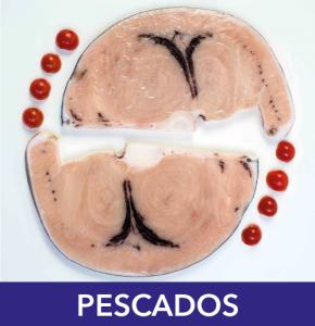 compra_pescados_buenmar