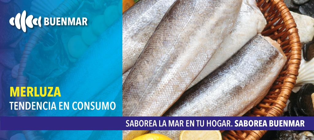 merluza-el-pescado-mas-consumido-en-españa
