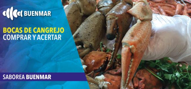 Bocas de cangrejo real, una gozada para tu paladar